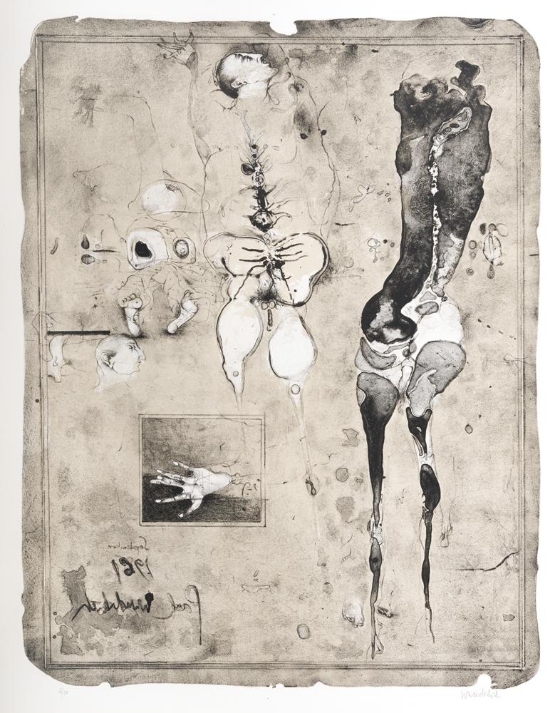1961 | Anatomie 61