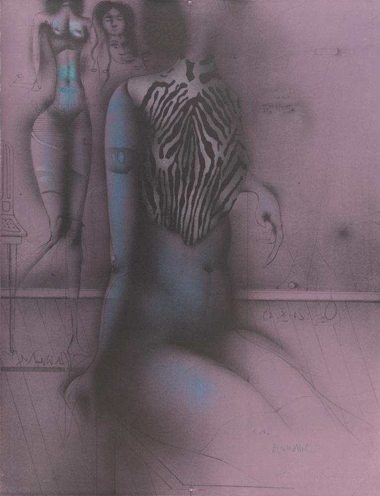 1969 | Zebrabluse
